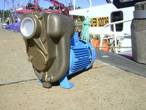 bronze marine motor pump